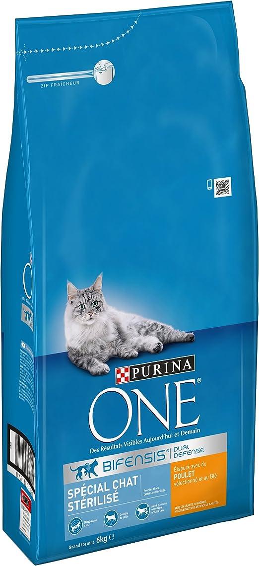 PURINA ONE - Alimento seco para Gatos Adultos, Especial para Gatos esterilizados - Bolsa de 6 kg con croquetas de Pollo y Trigo: Amazon.es: Productos para mascotas