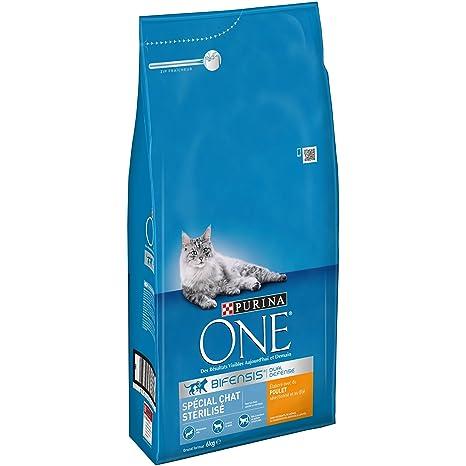 Purina ONE - Alimento seco para Gatos Adultos, Especial para Gatos esterilizados - Bolsa de