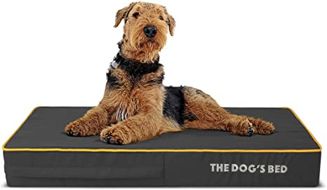 Dog Pain Relief for Arthritis Post Surgery The Dog/'s Bed Orthopedic Dog Bed Lameness Senior Supportive Premium Memory Foam S-XXL Washable Cover Hip /& Elbow Dysplasia Calming Bed Waterproof