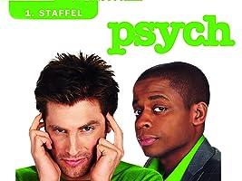 Psych, Staffel 1