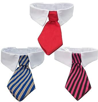 3 Corbatas para perros y gatos Color Rojo, Azul y Dorado, Fucsia y ...