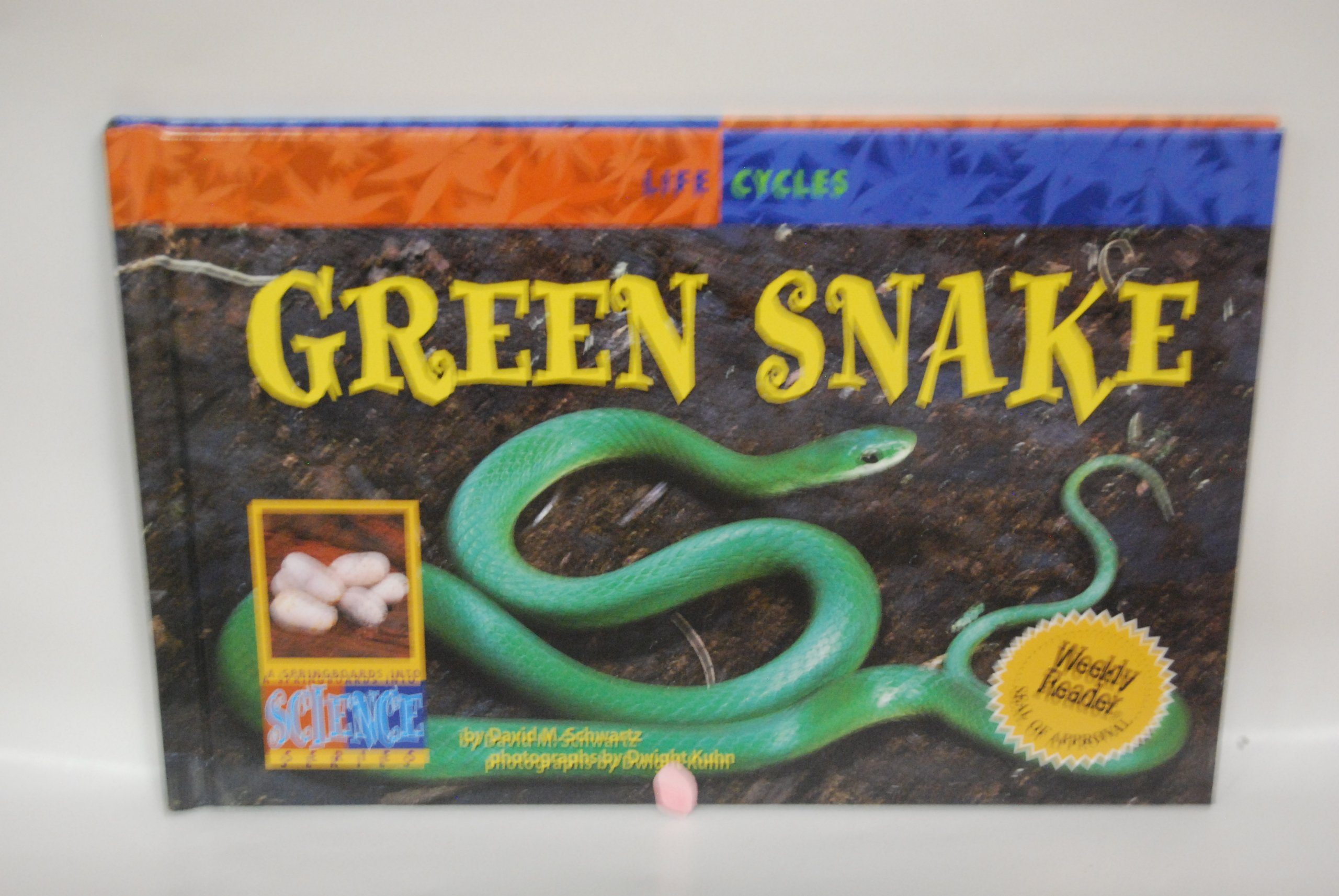 Green Snake (Life Cycles) PDF