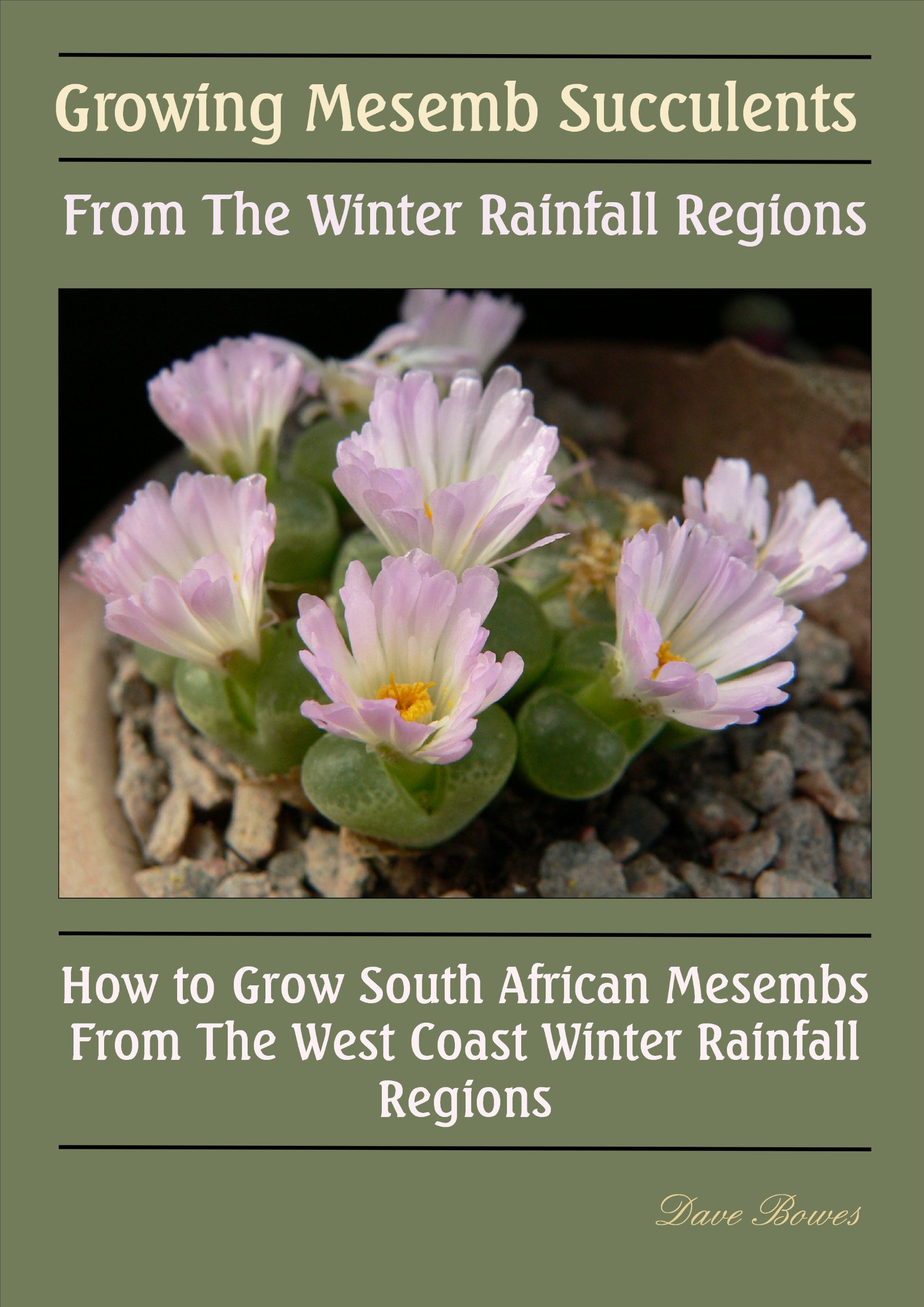 Growing Mesemb Succulents From The Winter Rainfall Regions  English Edition