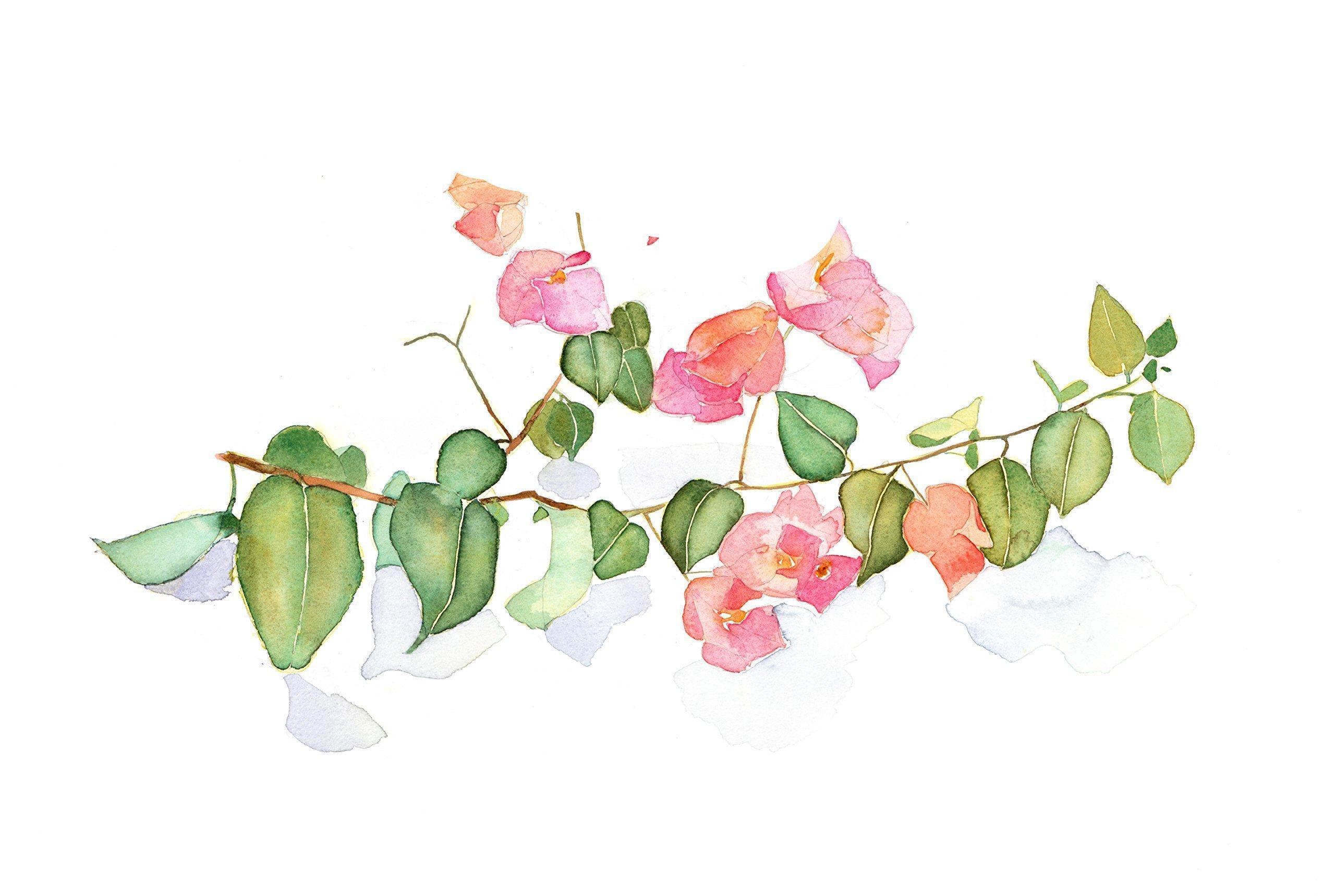 silk flower arrangements watercolor floral painting - fine art print, office, home decor, gift, bougainvillea