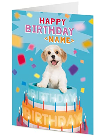 PERSONALISED Happy Birthday Cavachon Bichon Frise X Cavalier King