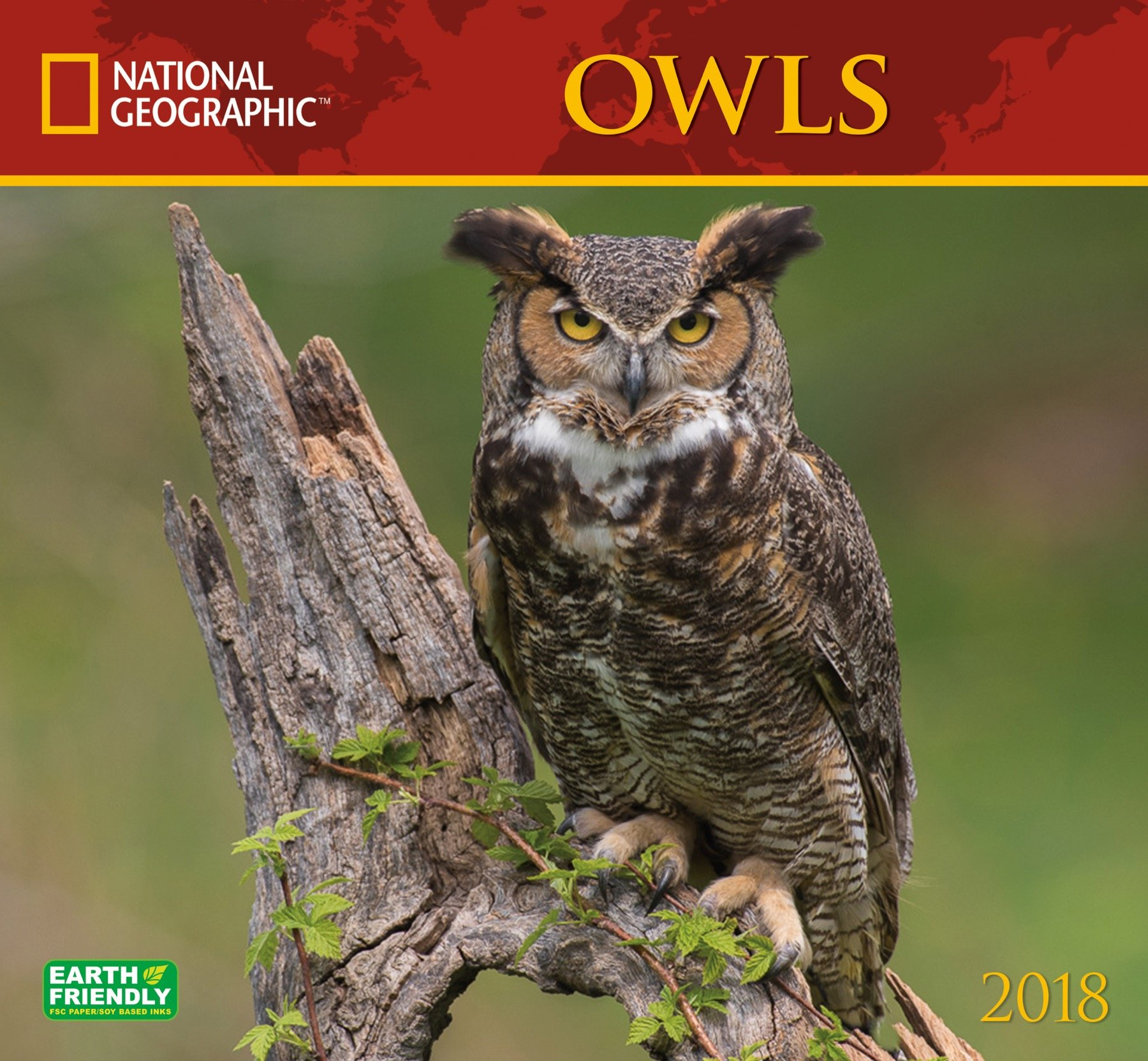 national geographic owls 2019 wall calendar