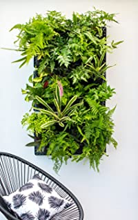 Expandable Green Wall W/Built In Micro Dripper (1)