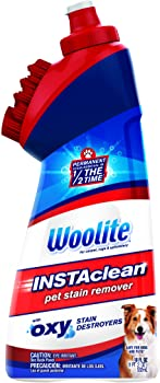 Bissell Woolite Instaclean Pet with Brush Head Cleaner