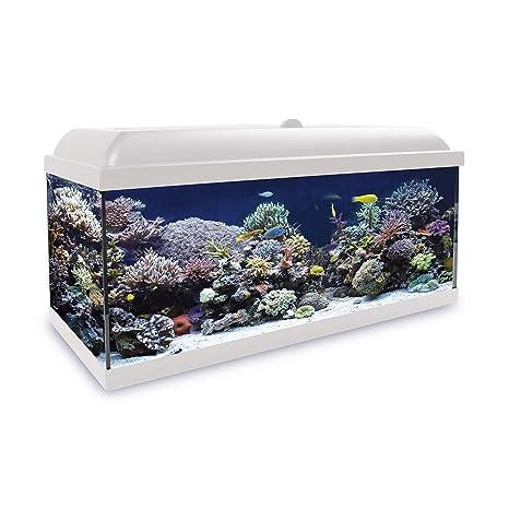 ICA KHS150B Kit Hydra 150 para Agua Salada