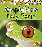 Amphibian Body Parts (Animal Body Parts)