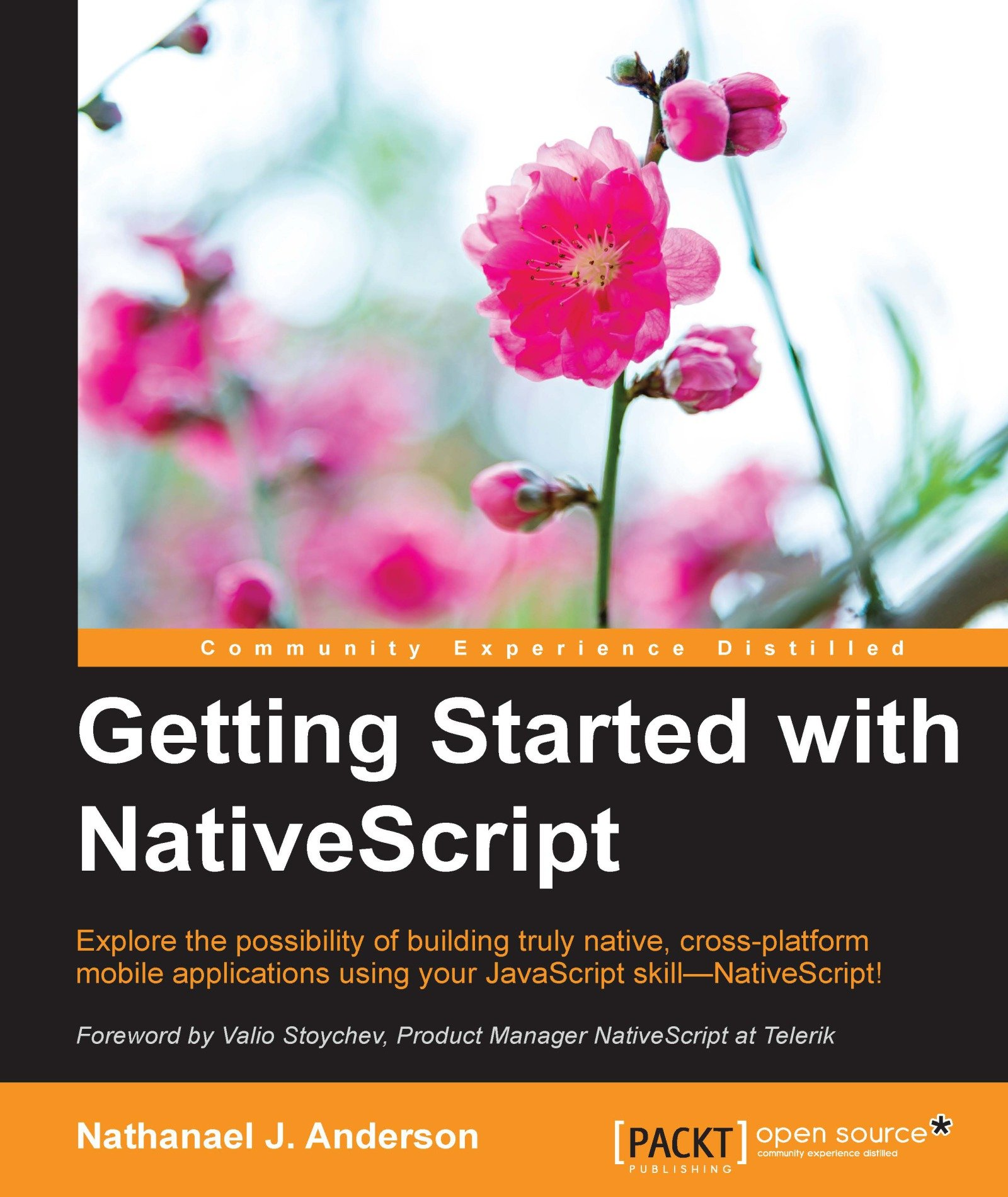 Getting Started with NativeScript (English Edition)