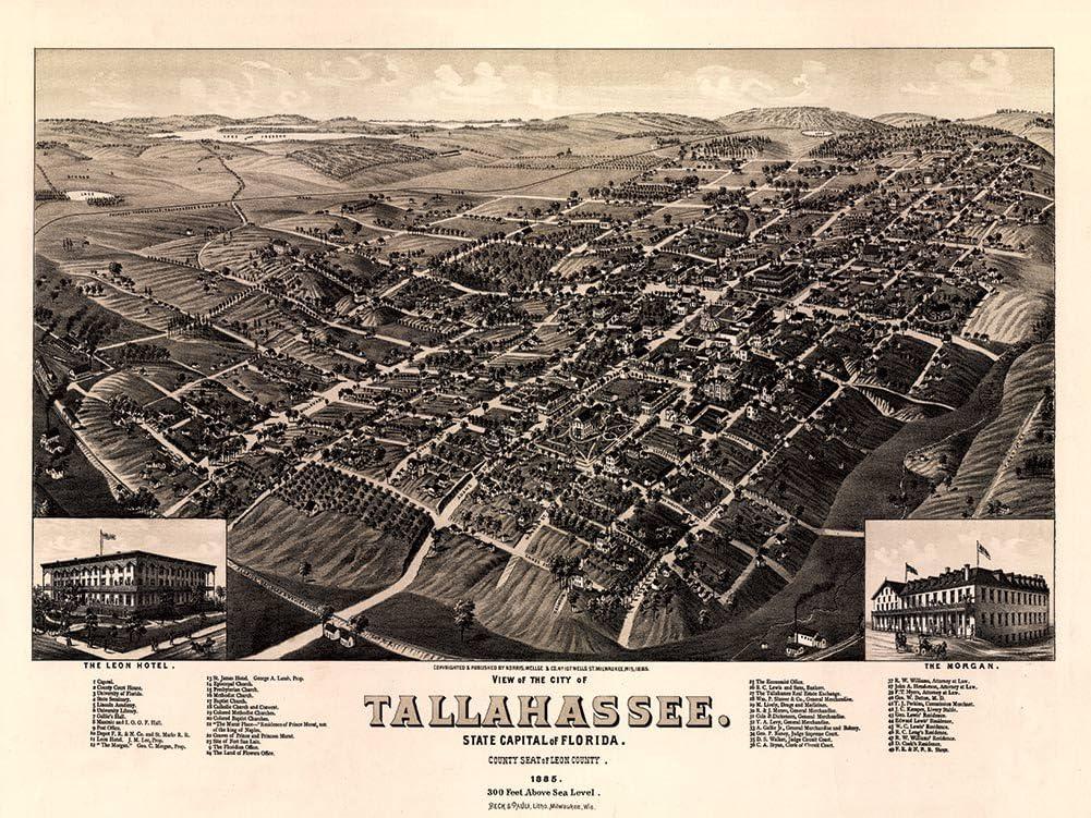 24x36 Bird/'s Eye View 1884 De Land Florida Vintage Style City Map
