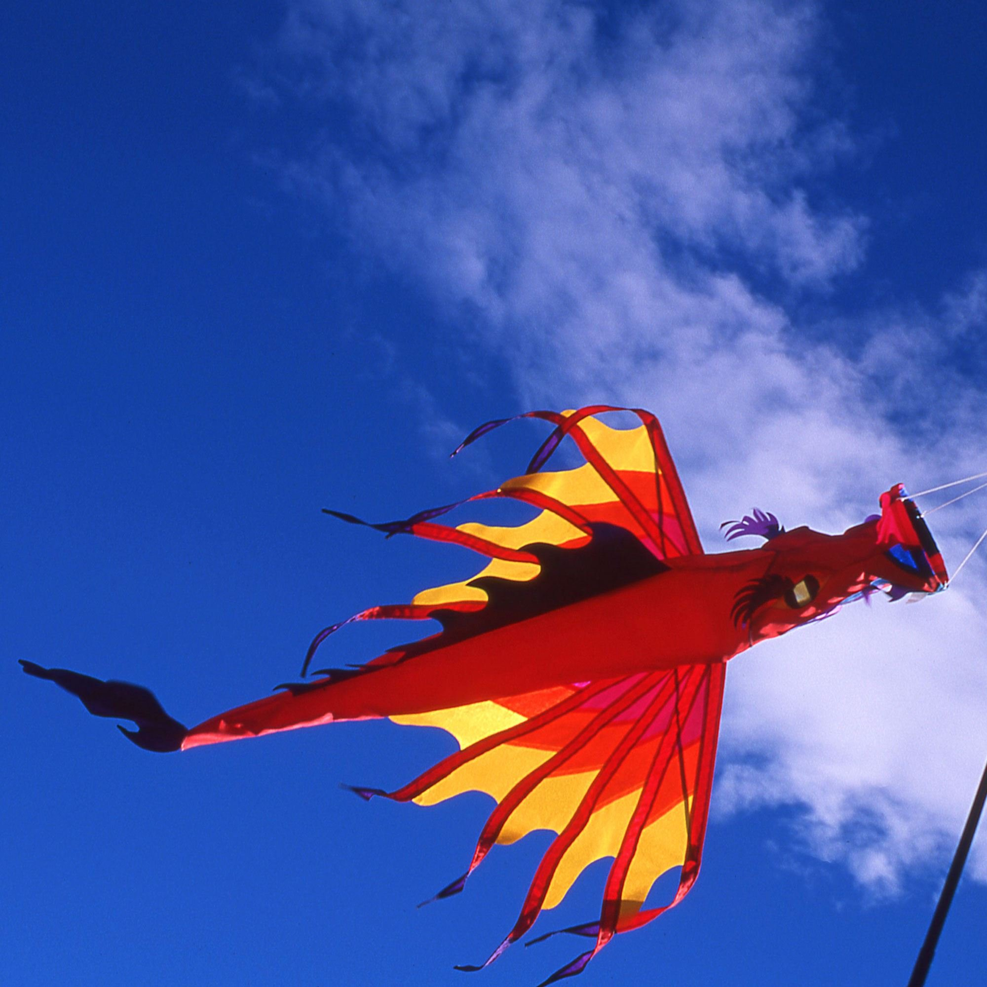 Winged Dragon Fabric Windsock