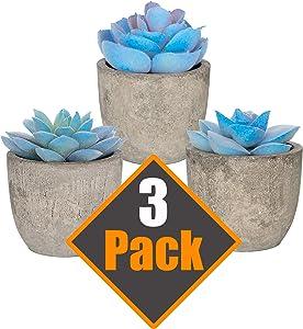 3 Piece Blue Artificial Succulent Plants with Cement-Like Pots Realistic Greenery Mini Potted Faux Plant Arrangements | Home Décor, Office, Dorm Room, Bathroom or Restroom, Kitchen Table Centerpieces
