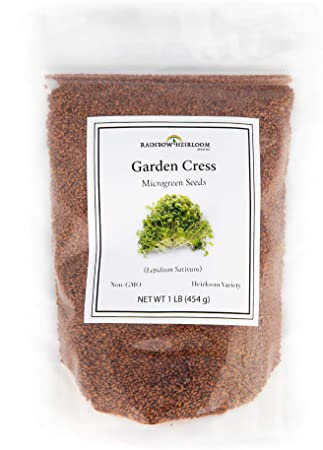 Amazon Com Garden Cress Seeds For Microgreens Planting