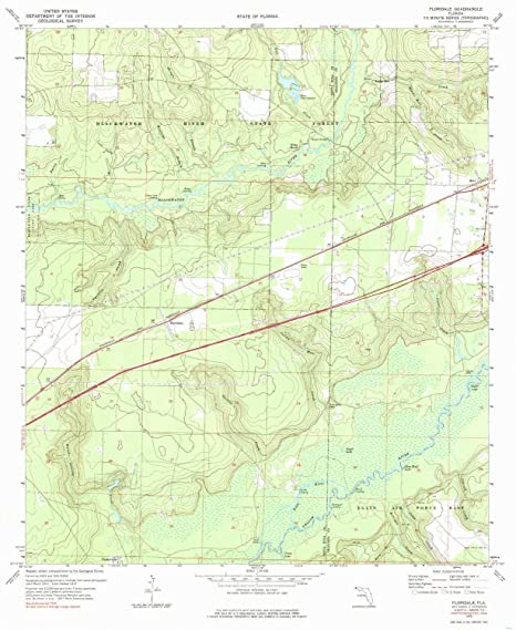 Amazon.com : YellowMaps Floridale FL topo map, 1:24000 Scale ...