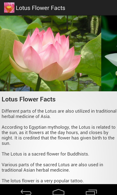 Amazon lotus flower facts appstore for android 000 mightylinksfo