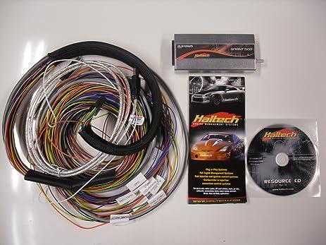 Haltech sport 1000 wiring diagrams gandul 457779119 wire diagram haltech platinum sprint 500 haltech sport 1000 haltech sport 1000 wiring diagrams haltech sport sciox Images