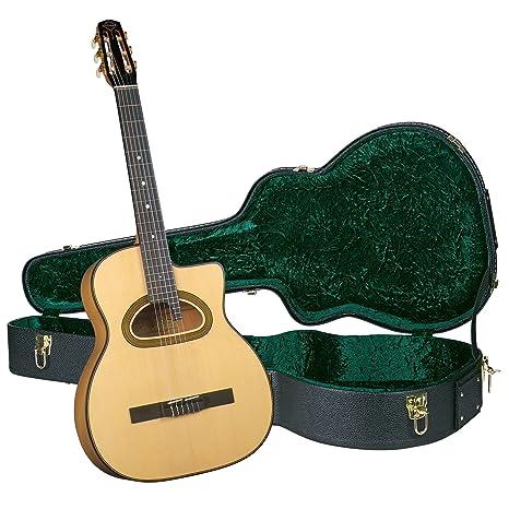 Gitane dg-560 guitarra con carcasa rígida: Amazon.es ...