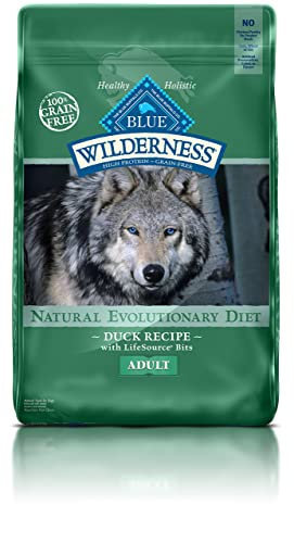 BLUE Wilderness Dry Dog Food Review