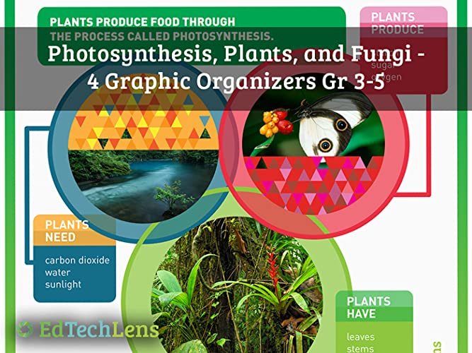 Photosynthesis, Plants, and Fungi: Graphic Organizers for Gr 3-5