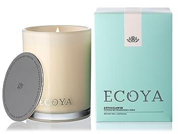 Amazon ecoya madison jar scented candle in lotus flower ecoya madison jar scented candle in lotus flower fragrance mightylinksfo