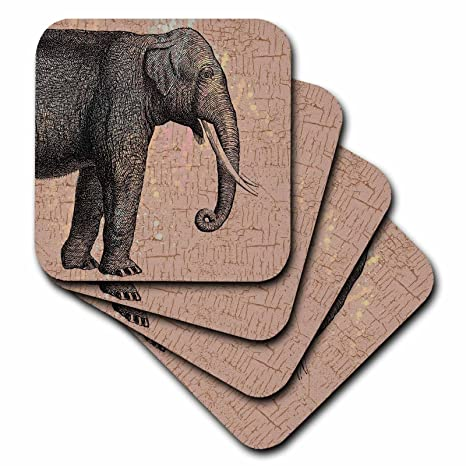 Amazon.com: PS animales – Gris Elefante – Posavasos: Home ...