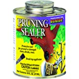 Bonide 225 16-Ounce Brush Top Pruning Sealer
