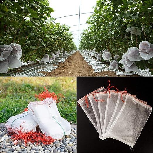 Amazon.com: Hasenus Bolsas de malla de protección de frutas ...