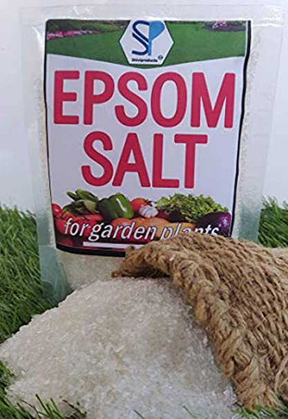 Buy Shiviproducts Epsom Salt For Flowering And Plant Growth 450 Gm Online At Low Prices In India Amazon In