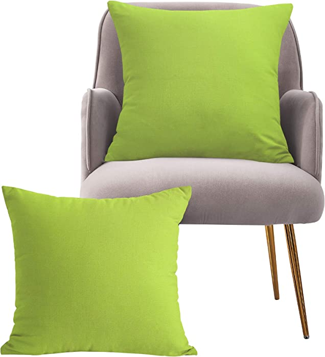 Leeden Lime Green Throw Pillow Covers 20X20 Set of 2 Neon Green Pillow Cushion Case for Outdoor Chair Couch Sofa Bed Patio Bistro Beach Farmhouse, Apple Green Pillow Covers 20x20 inch(50x50cm)