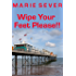 WIPE YOUR FEET PLEASE!!!   Diaries of a B&B guesthouse.: Book One (Diaries of a Bed and Breakfast in Paignton, England 1)