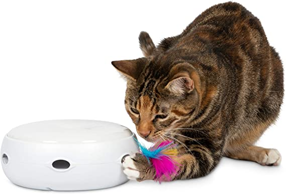 Top 10 Best Cat Toys For Bored Cats [Updated December 2020] 1
