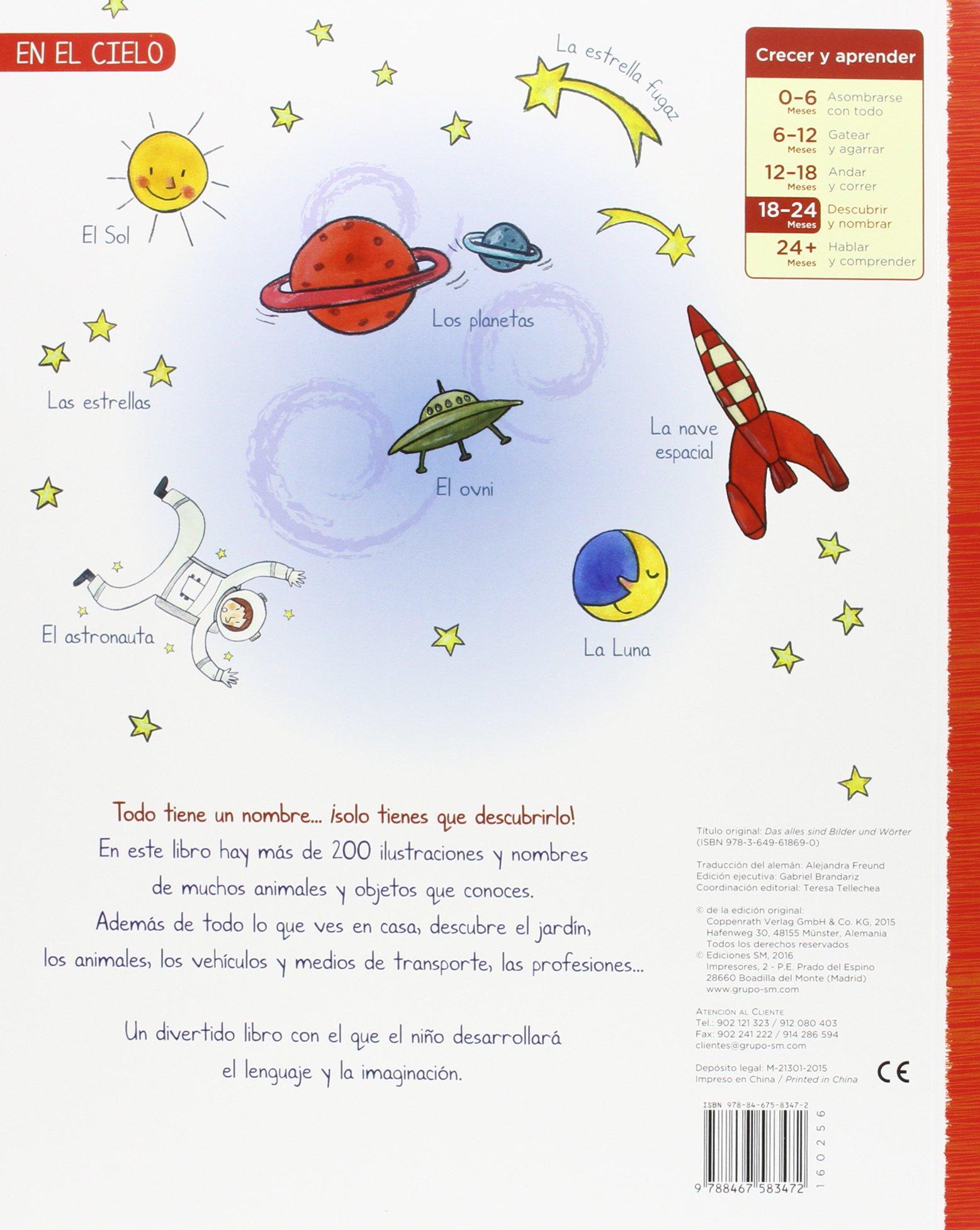 Mi gran imaginario (Libros de cartón): Amazon.es: Kawamura, Yayo, Kawamura, Yayo, Freund Urrutia, Alejandra: Libros
