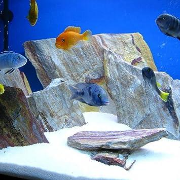 Tm Aquatix 10 kg de piedra natural de arco iris para un acuario viverio tanque decoración roca: Amazon.es: Productos para mascotas