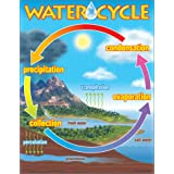 Trend Enterprises The Water Cyclelearning Chart (T-38119)