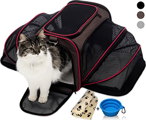 84e9660eca Petyella Cat Carrier Pet Carrier for Small Dogs and Cats Expandable Soft  Sided Crate for Pet