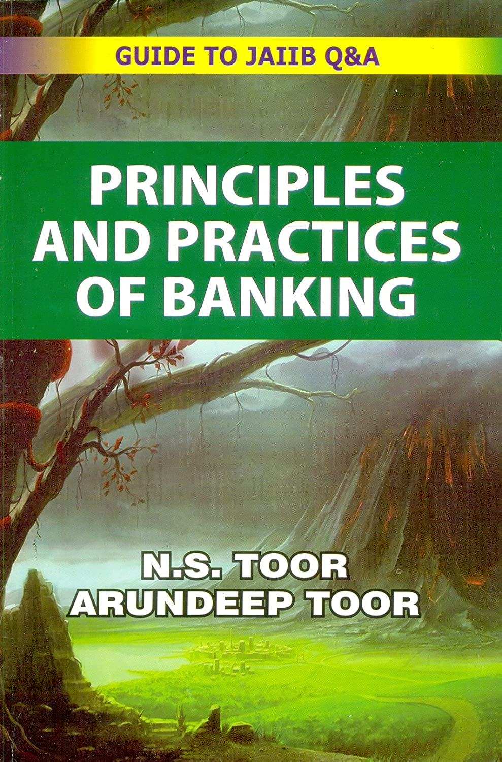 Workbooks jaiib workbook : Principles and Practices of Banking: Amazon.in: Electronics