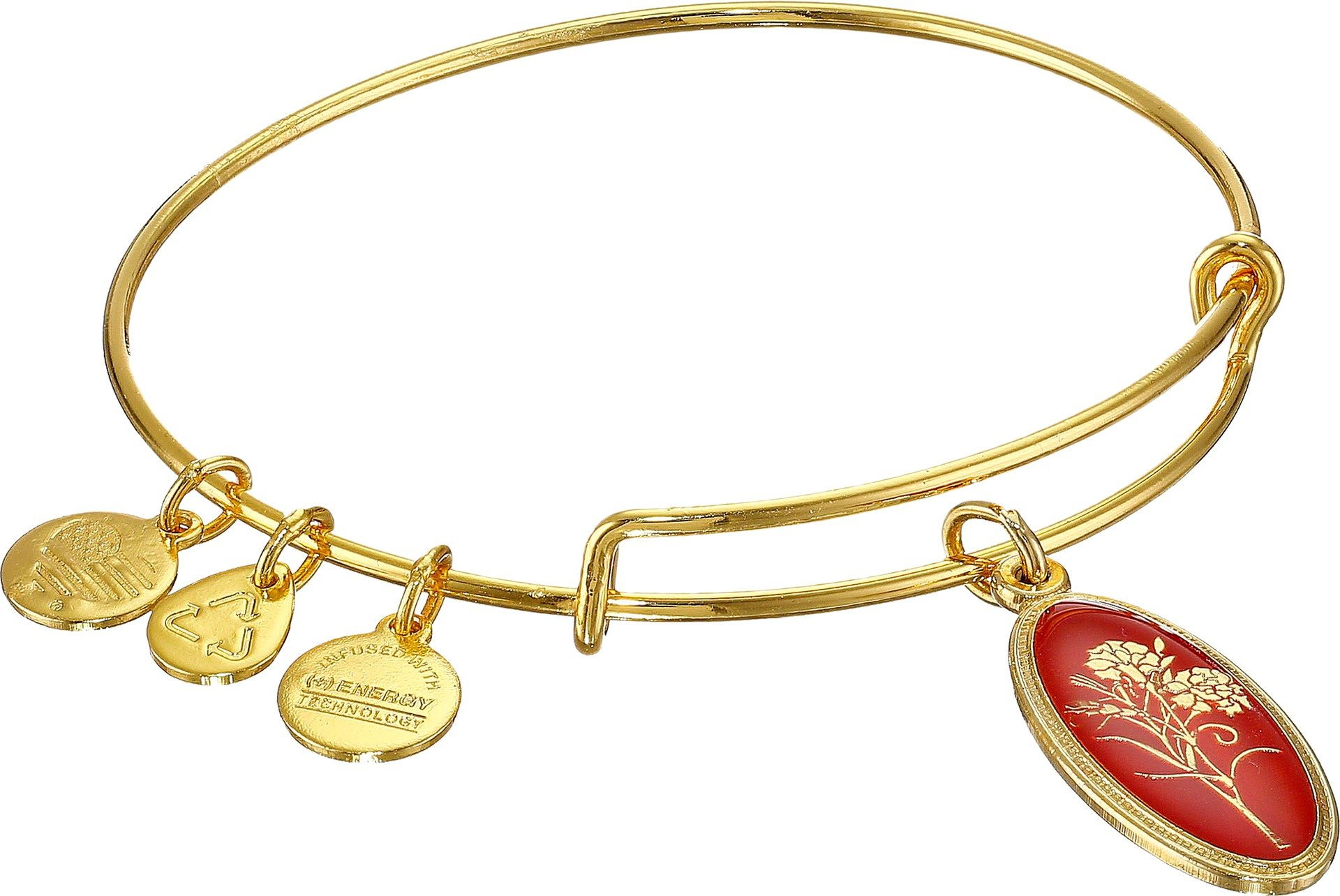Alex and Ani Love Spell Carnation Gold-Tone Expandable Wire Bangle Bracelet by Alex and Ani (Image #1)