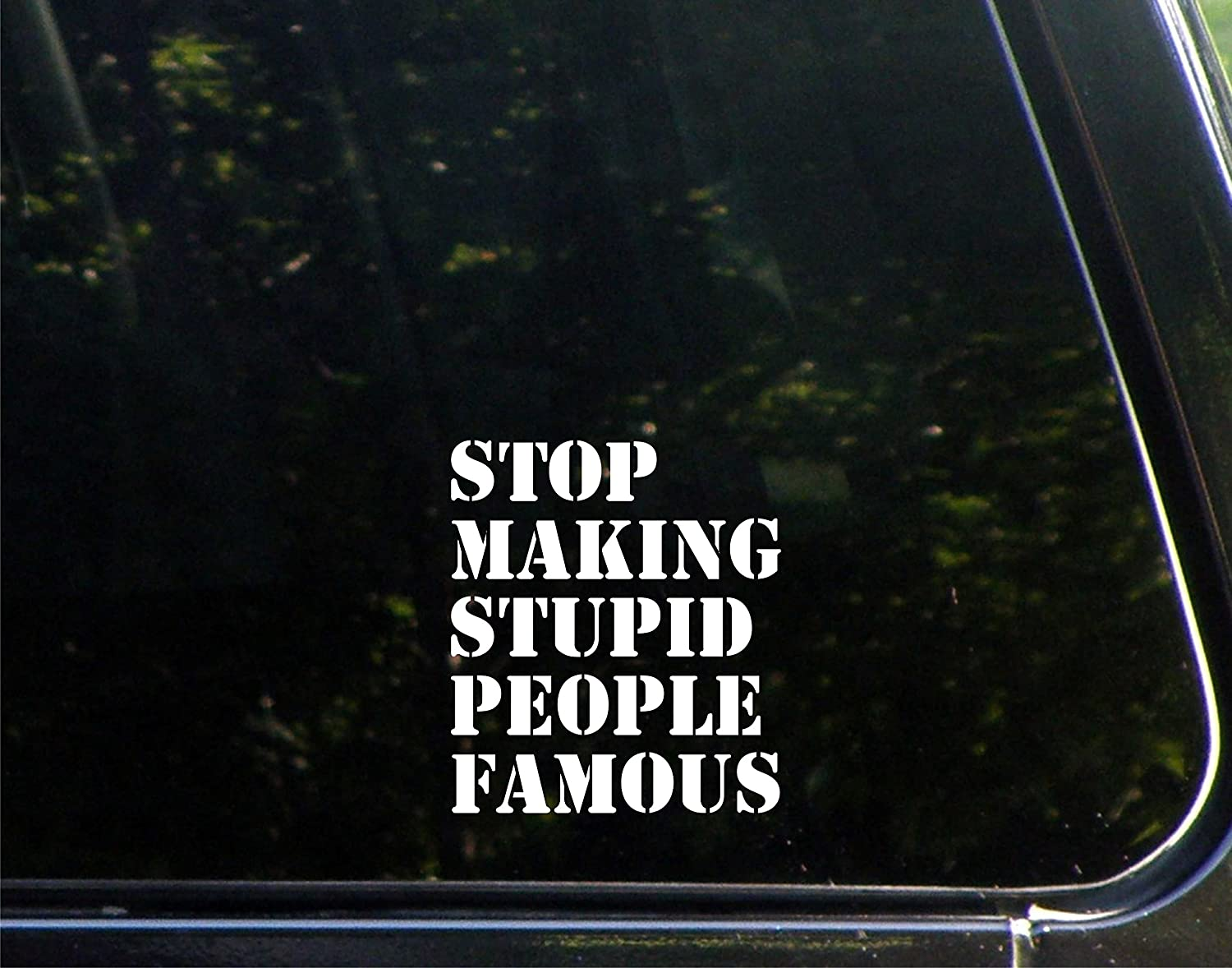Stop making stupid people famous DIE CUT VINYL DECAL for any hard surface.