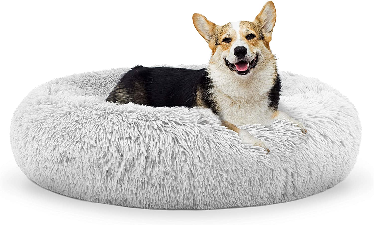 Best Beds for Dogs Who like to Burrow