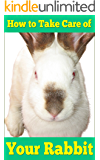 How to Take Care of Your Rabbit | For First Time and Pro Owners of Furry Friends |