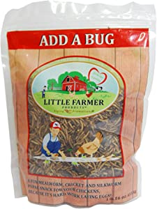 LITTLE FARMER PRODUCTS Add a Bug | Premium Poultry Mix Dried Mealworms, Silkworm Pupae and Crickets | 1 lb