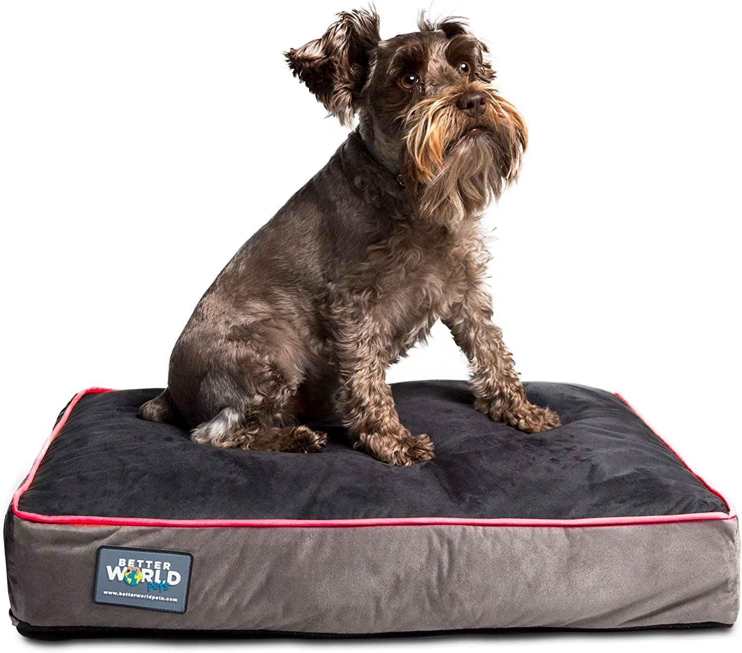 Better World Pets 5-inch Thick Orthopedic Dog Bed | Pure Premium Shredded Memory Foam Ideal for Aging Dogs | Waterproof Removable Washable Cover