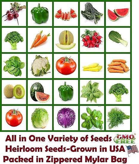 NON-GMO NON-HYBRID HEIRLOOM VEGETABLE GARDEN SEED BANK PACK