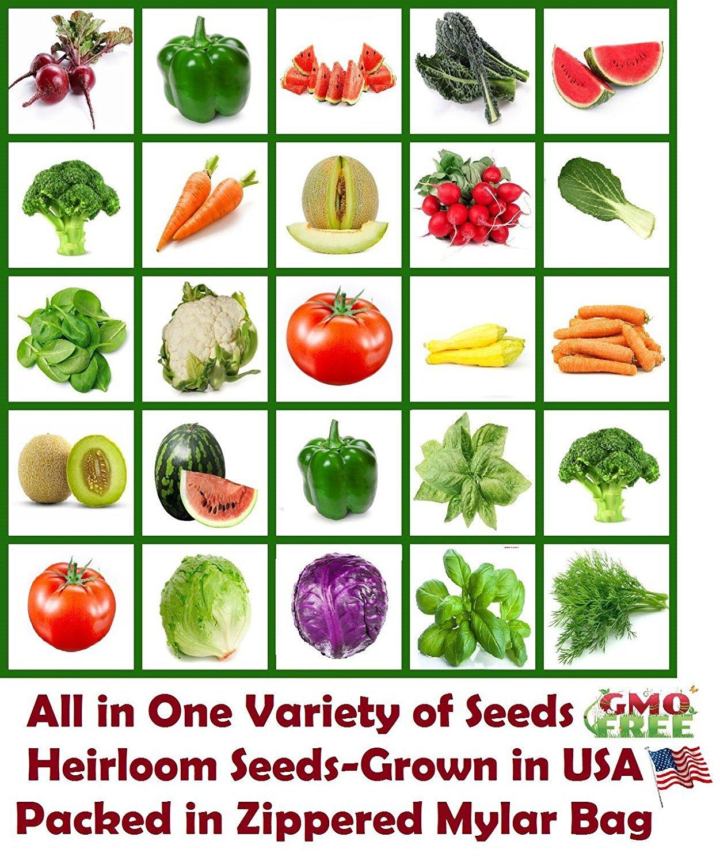 Survival Seed Emergency Bank Organic Food Vegetable Non GMO Hybrid Heirloom Kit