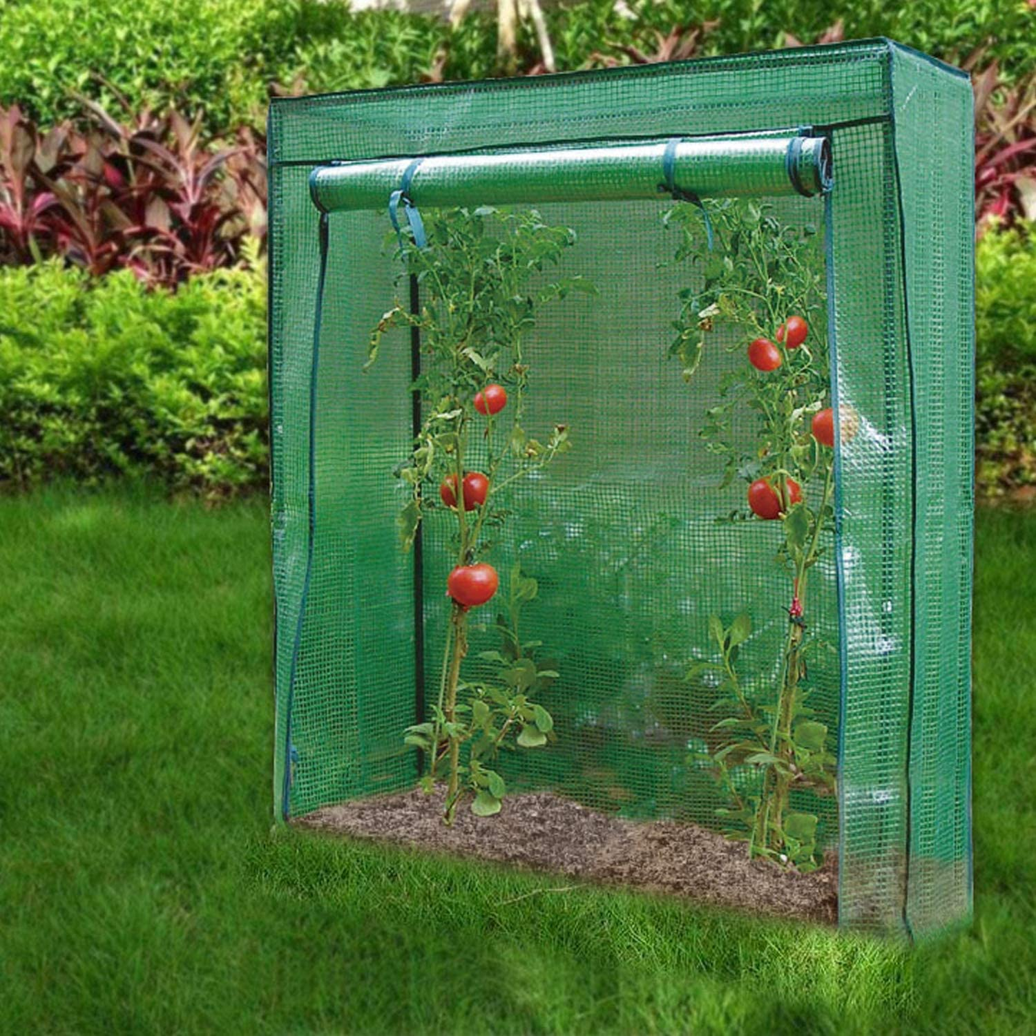 Green Janoon Tomato Greenhouse Frame and Reinforced PE Weather Cover Garden Vegetables Grow and Cultivation