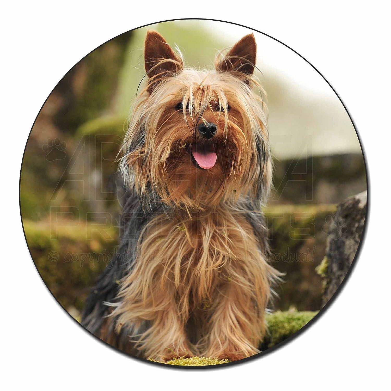 Yorkshire Terrier Dog Fridge Magnet Stocking Filler Christmas Gift AD-Y84FM