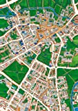 Cambridge - Views from Above Britain -1000 Piece Map Puzzle