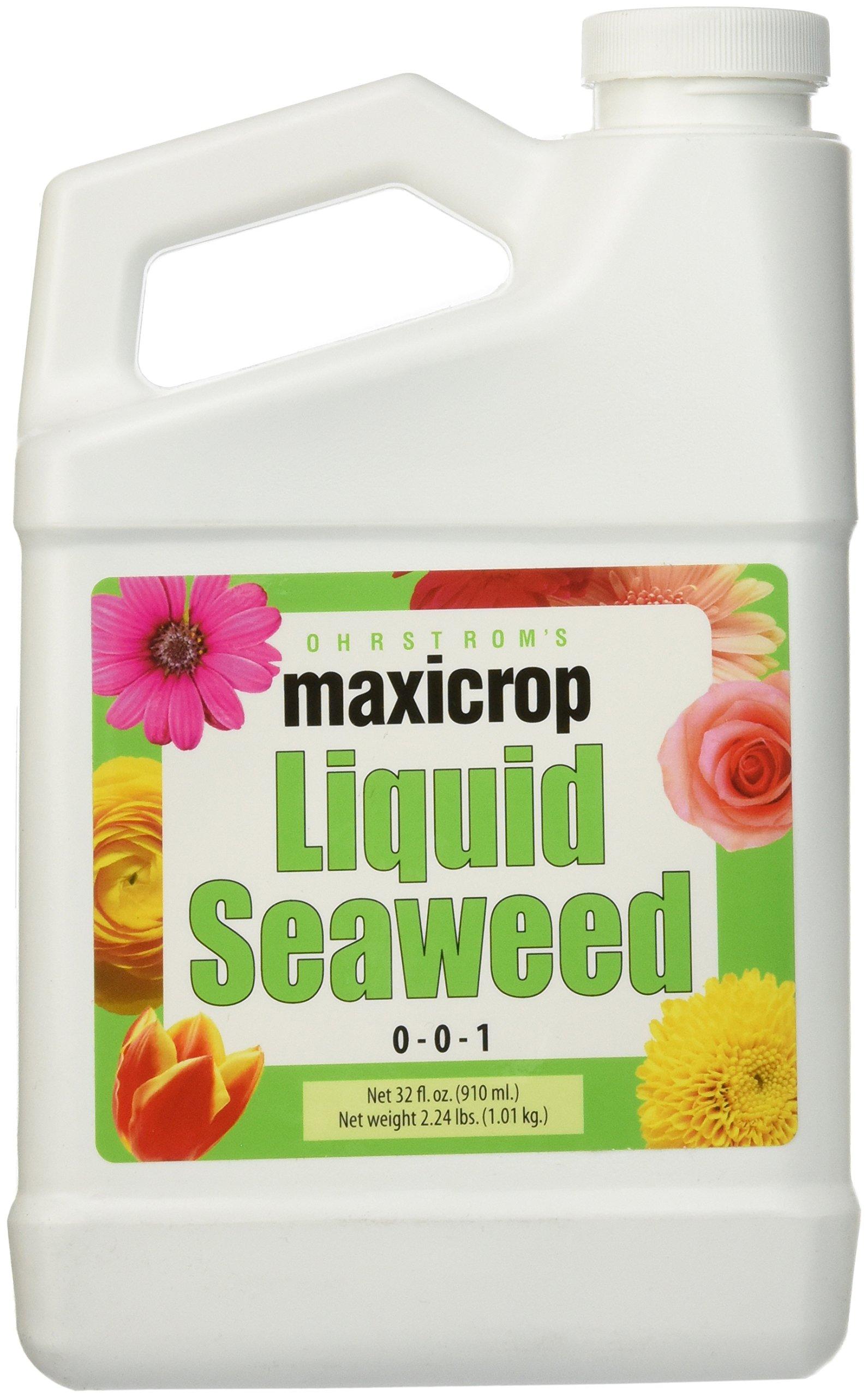 Maxicrop 1001 Liquid Seaweed, 1-Quart